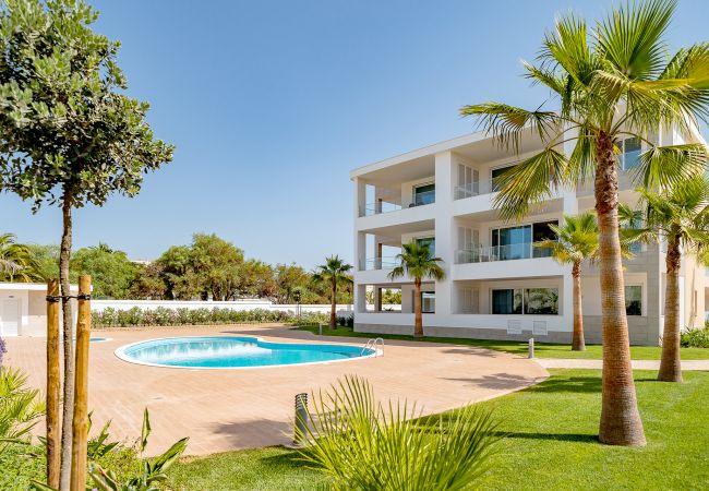in Lagos - Garden Apartment Vila Ancora   Pool   Lagos